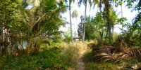 koh-chang-land-for-sale