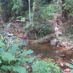 koh-chang-trekking-jungle-fever-trekking-river
