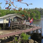 viewpoint-cafe-klong-chao-beach-koh-kood