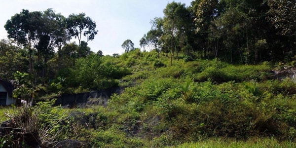land-sale-koh-chang-south-east-front