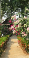 bungalow resort for sale west coast koh chang
