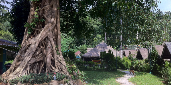 small-resort-for-sale-koh-chang